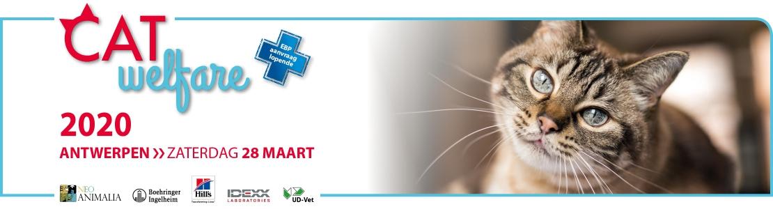 Cat Welfare 2020 Antwerpen